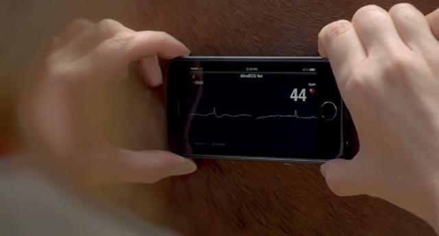 iPhone-5s-4-201482163129