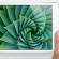 Màn hình iPad Mini 1,2,3 có thể sẽ vượt trội hơn iPad 4 về độ phân giải?